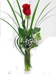 Cam içerisinde 1 kırmızı gül  Ankara İnternetten çiçek siparişi