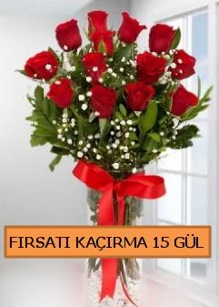 15 İthal kırmızı gül büyük başlı orjinal  Ankara internetten çiçek satışı