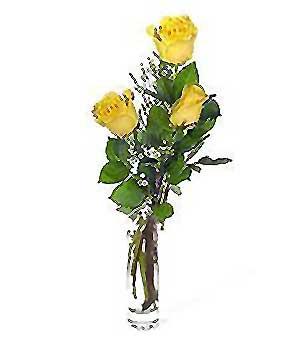 Balgat Ankaradaki çiçekçiler  3 adet kalite cam yada mika vazo gül