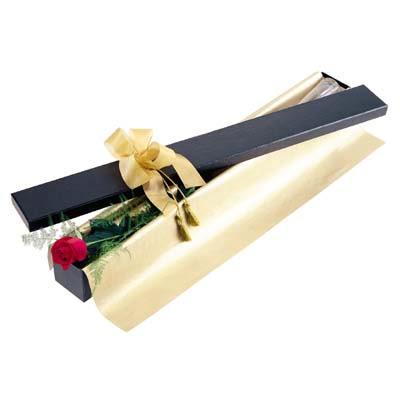 Balgat ucuz çiçek gönder  tek kutu gül özel kutu