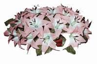 yapay karisik çiçek sepeti   Ankara Balgat online internetten çiçek siparişi