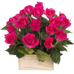 12 adet pembe güllerden sepet tanzimi  yurtiçi ve yurtdışı çiçek siparişi
