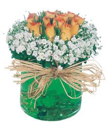 Balgat Ankara çiçek siparişi sitesi  Cam yada mika içerisinde 9 adet  gül aranjmani