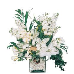 Balgat Ankaradaki çiçekçiler  sadece beyazlardan olusmus mevsim cam yada mika tanzim