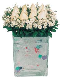Ankara Balgat online internetten çiçek siparişi  7 adet beyaz gül cam yada mika vazo tanzim
