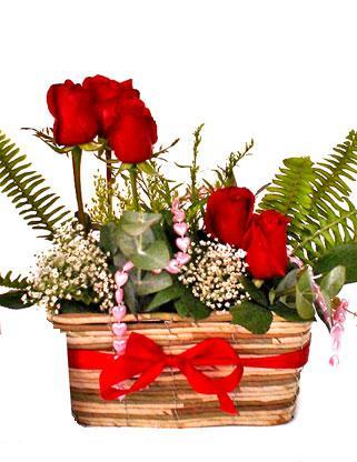 Balgat ucuz çiçek gönder  SEVDIM DIYENLERE Örme sepet 9 adet kirmizi gül