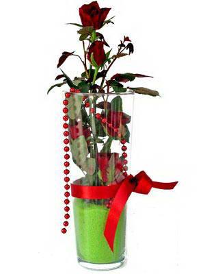 Balgat online çiçek siparişi vermek  Cam yada mika içerisinde 9 adet kirmizi gül - sevdiklerinize özel