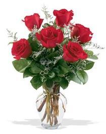 Ankara İnternetten çiçek siparişi  7 adet kirmizi gül cam yada mika vazoda sevenlere