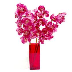 Balgat  ucuz çiçek , çiçekçi , çiçekçilik  Cam yada mika vazo içerisinde 3 adet dal orkide