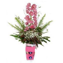 Balgat Ankara uluslararası çiçek gönderme  cam yada mika vazo içerisinde tek dal orkide çiçegi