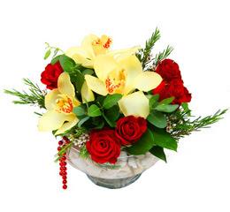 Balgat çiçek gönderme sitemiz güvenlidir  1 kandil kazablanka ve 5 adet kirmizi gül