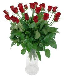 Balgat Ankara çiçek gönderme  11 adet kimizi gülün ihtisami cam yada mika vazo modeli