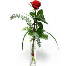 Balgat Ankara çiçek online çiçek siparişi  Sana deger veriyorum bir adet gül cam yada mika vazoda