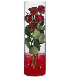 cam içerisinde 7 adet kirmizi gül  Ankara çiçekçi mağazası