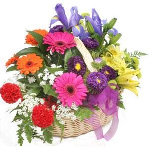 Karisik mevsim çiçekleri sepeti  Balgat Ankaradaki çiçekçiler