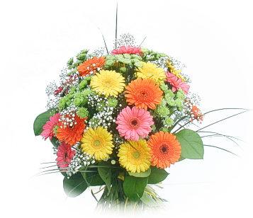 13 adet gerbera çiçegi buketi  Balgat online çiçek siparişi vermek