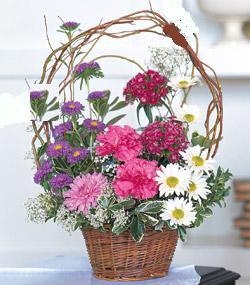 Görsel kir çiçegi sepeti mis kokulu  Ankara internetten çiçek satışı