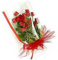 13 adet kirmizi gül buketi sevilenlere  Balgat Ankara online çiçek gönderme sipariş