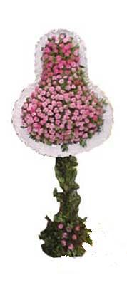 Balgat  ucuz çiçek , çiçekçi , çiçekçilik  dügün açilis çiçekleri  Balgat Ankaradaki çiçekçiler