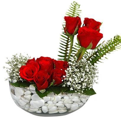 cam içerisinde 9 adet kirmizi gül  Balgat Ankara online çiçek gönderme sipariş