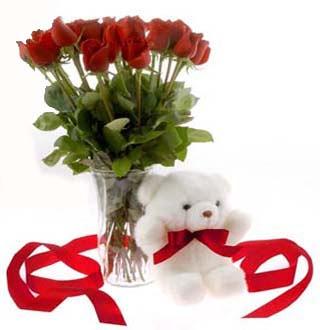 Balgat online çiçek siparişi vermek  12 adet kirmizi gül ve pelus ayicik