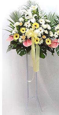 Balgat online çiçek siparişi vermek   perförje çiçegi dügün çiçekleri