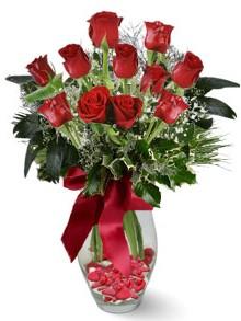 9 adet gül  Balgat Ankara çiçek siparişi sitesi  kirmizi gül
