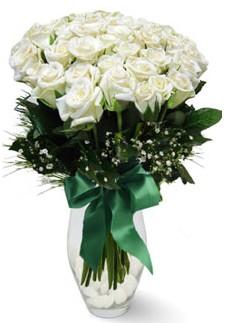 19 adet essiz kalitede beyaz gül  Ankara çiçekçi mağazası