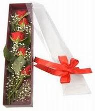 kutu içinde 5 adet kirmizi gül  Balgat Ankaradaki çiçekçiler