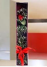 kutu içinde tek kirmizi gül  çiçek mağazası , çiçekçi adresleri