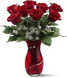 Vazo içinde 8 adet kirmizilar içinde güller  Balgat Ankaradaki çiçekçiler