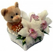 Balgat online çiçekçi telefonları  15 cm boyutlarinda ayicik ve 1 kandil orkide