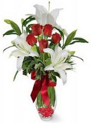 Balgat Ankara online çiçek gönderme sipariş  5 adet kirmizi gül ve 3 kandil kazablanka