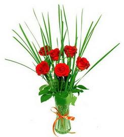 Ankara çiçekçiler hediye çiçek yolla  6 adet kırmızı güllerden vazo çiçeği