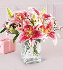 2 dal kazablanka görsel vazosu  Ankara internetten çiçek satışı