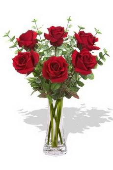Ankara Balgat online internetten çiçek siparişi  6 kırmızı gül vazosu