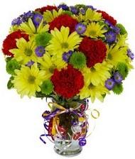 En güzel hediye karışık mevsim çiçeği  Balgat Ankara uluslararası çiçek gönderme