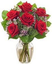 Kız arkadaşıma hediye 6 kırmızı gül  Balgat Ankaradaki çiçekçiler
