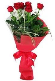 Çiçek yolla sitesinden 7 adet kırmızı gül  Balgat Ankara çiçek siparişi sitesi