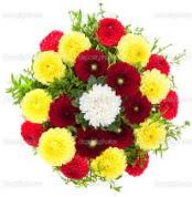 Ankara Balgat online internetten çiçek siparişi  13 adet mevsim çiçeğinden görsel buket