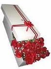 Balgat Ankara çiçek gönderme  11 adet 1.kalite magnum güller