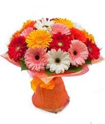 Renkli gerbera buketi  hediye sevgilime hediye çiçek