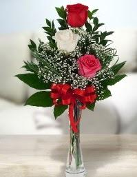 Camda 2 kırmızı 1 beyaz gül  Balgat  ucuz çiçek , çiçekçi , çiçekçilik