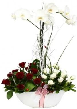Tek dal beyaz orkide 8 beyaz 8 kırmızı gül  çiçek satışı ankara balgat çiçekçi