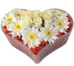 Kalp içerisinde 7 beyaz gül ve papatyalar  Balgat Ankara çiçek siparişi sitesi
