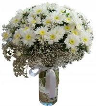 Vazoda beyaz papatyalar  yurtiçi ve yurtdışı çiçek siparişi
