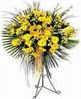 yurtiçi ve yurtdışı çiçek siparişi  Sari kazablanka Ferforje