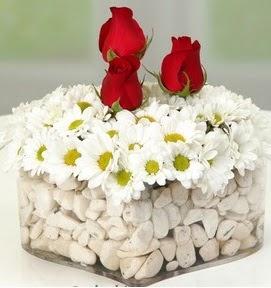 Mika kalpte papatyalar ve 3 gül  Balgat Ankara çiçek gönderme