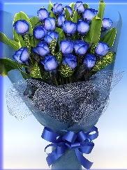 19 adet eşsiz mavi gül buketi  Balgat ucuz çiçek gönder