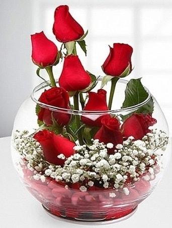Kırmızı Mutluluk fanusta 9 kırmızı gül  Ankara internetten çiçek satışı